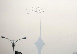 کمیسیون سلامت و محیط زیست شورای شهر تهران: افزایش ریزگردها در تهران منشاء داخلی دارد