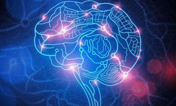 احتمال اتصال مغز انسانها به یکدیگر در آیندهای نه چندان دور