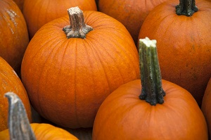 مواد غذایی انرژیزا مختص پاییز