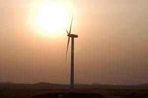 سرمایه گذاری گوگل در بزرگترین نیروگاه برق بادی آفریقا