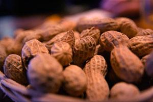 آلرژیهای غذایی با سیستم ایمنی بیش فعال در ارتباط هستند
