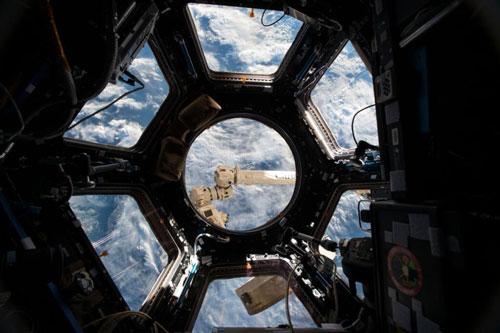 یک سال شگفتانگیز در فضا