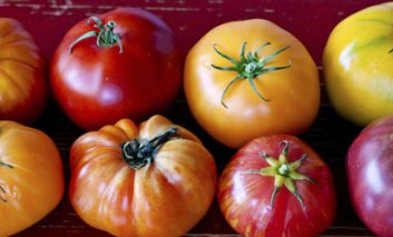 ۵ ماده غذایی برای افزایش محافظت طبیعی پوست در برابر آفتاب