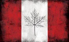 کانادا در آتش سوخت