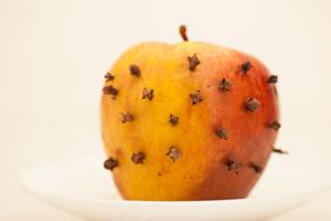 چگونه از شر مگسهای خانگی در فضای باز خلاص شوید؟