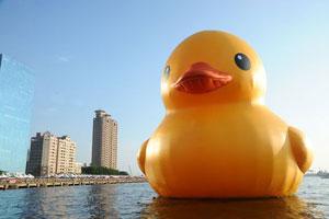 آیا اردک پلاستیکی هافمن یک فاجعه زیست محیطی را پوشش میدهد؟