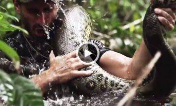 ویدیوی بلعیده شدن یک فیلمساز آمریکایی بوسیله مار «آناکوندا»