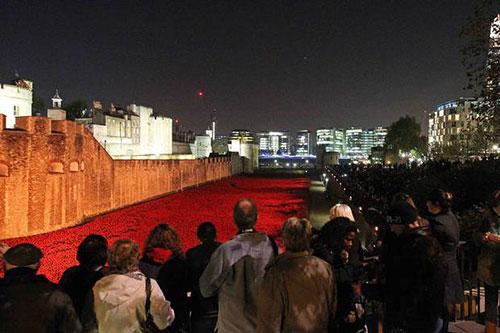 امروز اینستالیشن گلهای شقایق برج لندن به پایان میرسد