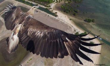 بهترین عکسهای هوایی سال ۲۰۱۴