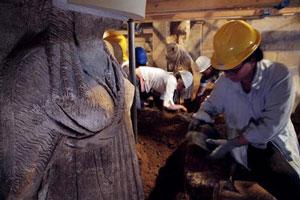 کشف سکههای قدیمی در مقبره آمفیپولیس