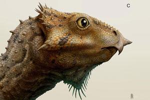 «چهره عقابی»؛ قدیمیترین دایناسور شاخدار