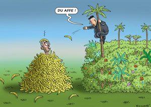 میمون استوایی