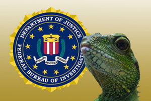 دستگیری یکی از هکرهای احتمالی «جوخه سوسمارها» توسط پلیس بریتانیا
