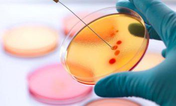 کشف آنتیبیوتیکی که میکروبهای مقاوم به آنتیبیوتیک را نیز از بین میبرد