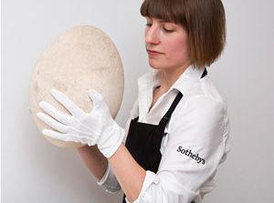 حراج تخم «پرنده فیلی» در لندن