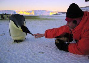جشنواره کن با اکران فیلمی جدید از کارگردان «رژه پنگوئنها» به کار خود پایان میدهد