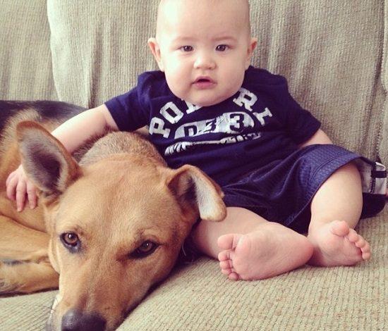 دوقلوهای جدانشدنی و یاران باوفا: کوچولوی نوپا و یک سگ