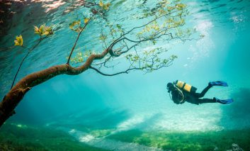برندگان مسابقه عکس ۲۰۱۴ National Geographic