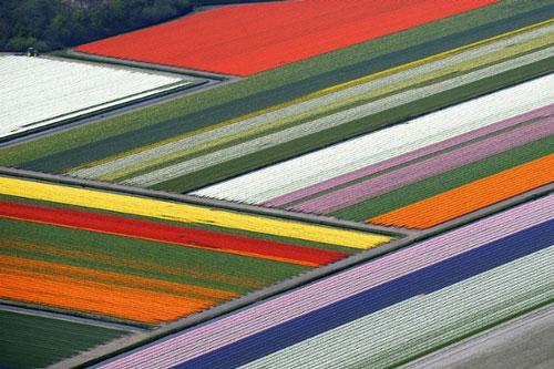 رنگین کمان جهان؛ مکانهای رنگارنگ بر روی زمین
