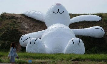 خرگوش سفید غول پیکر هافمن در تایوان