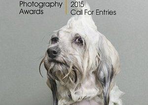 فراخوان عکاسی؛ تصاویر خیره کننده در بخش مسابقات جهانی عکاسی ۲۰۱۵