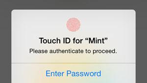 امنیت اطلاعات بانکی با Mint