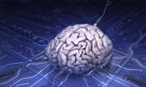 چندوظیفگی و تأثیر آن بر تراکم جسم خاکستری مغز