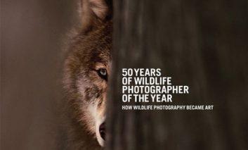 ۵۰ سال عکاسی از حیات وحش