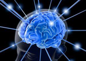 دریافت جایزه نوبل برای کشف GPS درون مغز