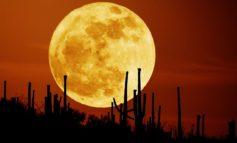 وقت شکار ماه*: تماشای بزرگترین مهتاب (اَبَرماه) ۷۰ سال اخیر جهان!