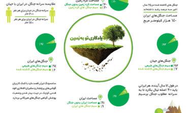 کاشت هزاران اصله نهال در ایران با همکاری سامسونگ