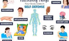 ۱۰ مکانیسم دفاعی بدن که شما را شگفتزده خواهد کرد