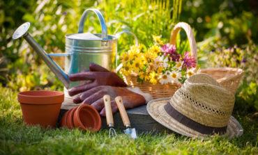 ۹ ترفند مهم و اقتصادی در باغبانی