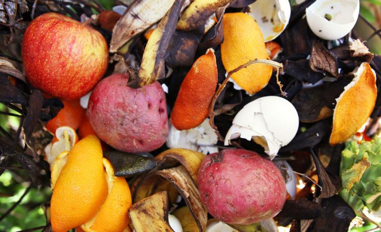 ۱۰ کاربرد شگفتانگیز پوست میوه و سبزیها