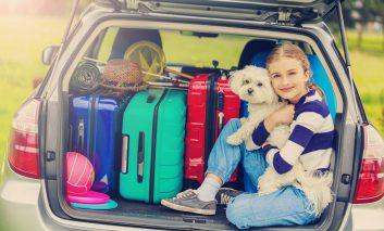 نکاتی هوشمندانه برای نظم دادن به خودروی خانواده