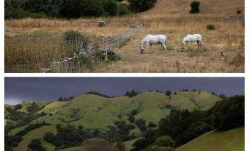 خشکسالی در کالیفرنیا: گذشته و حال
