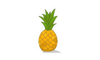 چگونه در خانه آناناس پرورش دهیم؟