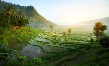 فصل سفر به بالی و بازدید از شگفتیها و عجایب سرزمین خدایان