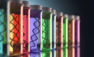 آیا آگاهی از ساختار ژنتیکی میتواند منجر به زندگی سالمتری شود؟