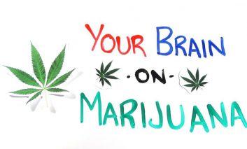 تاثیرات کشیدن ماریجوانا