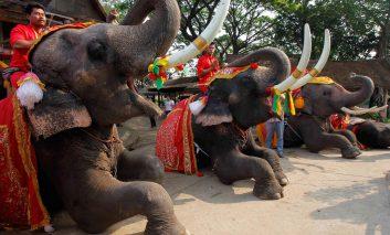 سفر ارزان در سرتاسر کشور تایلند