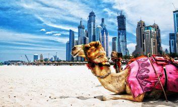 برنامهریزی برای لذت بردن از سفر به دوبی در تعطیلات