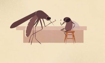 چرا تعداد حشرات اینقدر زیاد است؟