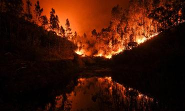داغ سنگین حریق در پرتغال