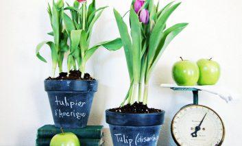 گلدانهای قدیمیتان را زیبا کنید!