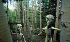 اشخاص مشهوری که موجودات فضایی را باور دارند