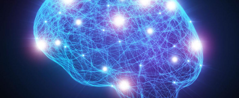 کشف ارتباط میان تعداد ژنهای هوش انسان و ضریب هوشی