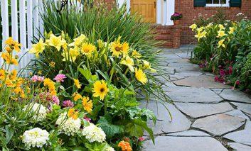 ۱۰ مرحله آسان برای شروع یک باغچه – قسمت دوم