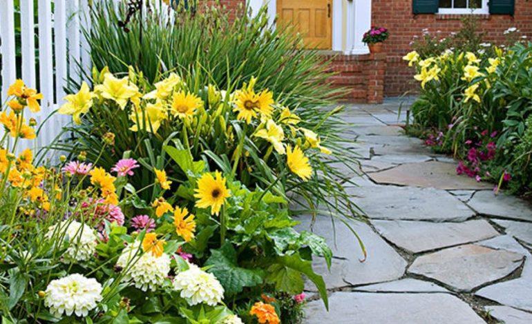 ۱۰ مرحله آسان برای شروع یک باغچه – قسمت اول