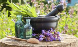 گیاهان دارویی بکارید!